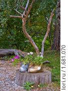 Купить «Ботинок-клумба», фото № 1681070, снято 12 сентября 2009 г. (c) Александр Рябов / Фотобанк Лори