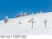 Купить «Зимний пейзаж», фото № 1687322, снято 8 марта 2010 г. (c) Юрий Брыкайло / Фотобанк Лори