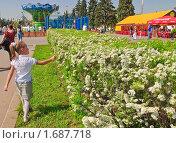 Купить «Девочка гуляет», эксклюзивное фото № 1687718, снято 8 мая 2010 г. (c) Алёшина Оксана / Фотобанк Лори
