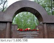 Цветы на памятной доске в Парке Победы (2010 год). Редакционное фото, фотограф Наталья Лабуз / Фотобанк Лори