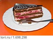 Кусок торта на тарелке. Стоковое фото, фотограф Инна Шишова / Фотобанк Лори