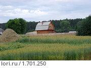 Домик в деревне. Стоковое фото, фотограф Стасис Иогминас / Фотобанк Лори