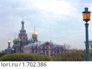 Собор Спас-на-Крови, Петербург (2010 год). Стоковое фото, фотограф Алексей Артамонов / Фотобанк Лори
