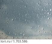 Дождь. Стоковое фото, фотограф Сергей Криволапов / Фотобанк Лори
