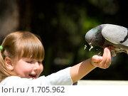 Купить «Девочка кормит голубя», фото № 1705962, снято 11 мая 2010 г. (c) Ольга Сапегина / Фотобанк Лори