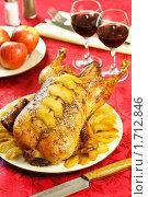 Купить «Утка с яблоками», эксклюзивное фото № 1712846, снято 18 мая 2010 г. (c) Лисовская Наталья / Фотобанк Лори