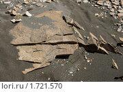 Купить «Фактура. Песок и камни.», фото № 1721570, снято 11 апреля 2010 г. (c) Самофалов Владимир Иванович / Фотобанк Лори