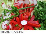 Купить «Свежие овощи и зелень», эксклюзивное фото № 1726142, снято 22 мая 2010 г. (c) Юрий Морозов / Фотобанк Лори