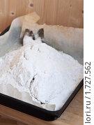 Купить «Карп, запеченный в соли», эксклюзивное фото № 1727562, снято 24 мая 2010 г. (c) Лисовская Наталья / Фотобанк Лори