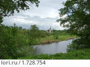 Весенняя прогулка. Стоковое фото, фотограф Евгения Недопёкина / Фотобанк Лори