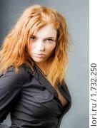 Купить «Рыжеволосая красотка», фото № 1732250, снято 9 марта 2010 г. (c) Александр Fanfo / Фотобанк Лори