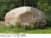 Купить «Самый крупный ледниковый валун в Подмосковье (дер. Лызлово).», фото № 1732490, снято 31 июля 2009 г. (c) Устинова Мария / Фотобанк Лори
