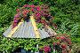 Оформление крыши дачной беседки розами и виноградом, эксклюзивное фото № 1740138, снято 29 мая 2010 г. (c) Анна Мартынова / Фотобанк Лори
