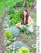 Купить «Девушка ухаживает за цветами», фото № 1743714, снято 12 мая 2010 г. (c) Майя Крученкова / Фотобанк Лори