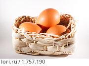 Яйца. Стоковое фото, фотограф Артём Ласьков / Фотобанк Лори