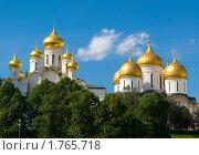 Купить «Москва. Кремль, панорама двух храмов», фото № 1765718, снято 6 июня 2010 г. (c) Пантюшин Руслан / Фотобанк Лори
