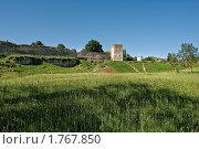 Купить «Талавская башня и Корсунская часовня. Вид с луга.», фото № 1767850, снято 5 июня 2010 г. (c) Виктор Пелих / Фотобанк Лори