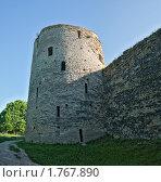 Купить «Изборская крепость», фото № 1767890, снято 5 июня 2010 г. (c) Виктор Пелих / Фотобанк Лори