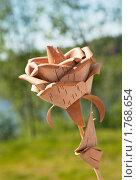 Декоративная роза. Стоковое фото, фотограф Алексей Климков / Фотобанк Лори
