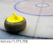 Купить «Камень для игры в кёрлинг», фото № 1771758, снято 17 января 2020 г. (c) Пашин Георгий / Фотобанк Лори
