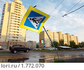 Купить «Последствия урагана», фото № 1772070, снято 14 июня 2010 г. (c) Andrey M / Фотобанк Лори