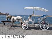 Лошадь с прогулочной коляской на набережной. Стоковое фото, фотограф Александр  Новоселов / Фотобанк Лори