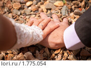 Вместе навсегда. Стоковое фото, фотограф Анастасия Шелестова / Фотобанк Лори