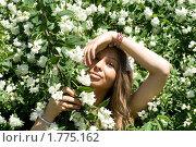 Купить «Девушка среди жасмина», фото № 1775162, снято 6 июня 2010 г. (c) Зореслава / Фотобанк Лори