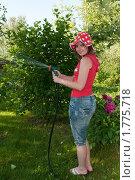 Купить «Девушка поливает цветы из поливочного шланга», эксклюзивное фото № 1775718, снято 12 июня 2010 г. (c) Юрий Морозов / Фотобанк Лори