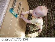 Малыш 9 месяцев достал до шкафа и пытается его открыть. Стоковое фото, фотограф Вдовенко Галина / Фотобанк Лори