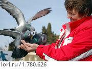 Купить «Запасной аэродром», эксклюзивное фото № 1780626, снято 5 марта 2008 г. (c) Анна Мартынова / Фотобанк Лори