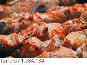 Купить «Шашлык», эксклюзивное фото № 1784134, снято 12 июня 2009 г. (c) Алёшина Оксана / Фотобанк Лори