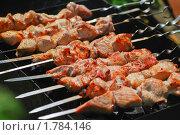 Купить «Шашлык на мангале», эксклюзивное фото № 1784146, снято 12 июня 2009 г. (c) Алёшина Оксана / Фотобанк Лори