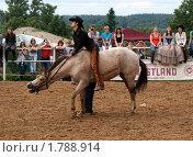 Ковбой на лошади без седла (2010 год). Редакционное фото, фотограф Галина Гаврилова / Фотобанк Лори