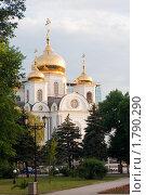 Купить «Собор Александра Невского», фото № 1790290, снято 20 июня 2010 г. (c) Алексей Букреев / Фотобанк Лори
