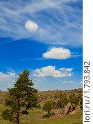 Купить «Горный пейзаж с деревом и облаками», фото № 1793842, снято 29 мая 2010 г. (c) Юлия Врублевская / Фотобанк Лори