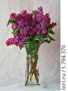 Купить «Букет сирени в хрустальной вазе», фото № 1794370, снято 14 мая 2010 г. (c) Дмитрий Зотов / Фотобанк Лори