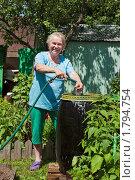 Женщина на даче. Подготовка к поливу. Стоковое фото, фотограф Ирина Завьялова / Фотобанк Лори