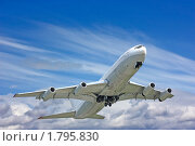 Купить «Самолет в небе», фото № 1795830, снято 14 июня 2010 г. (c) Екатерина Тарасенкова / Фотобанк Лори