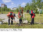 Купить «Приполярный Усинск. Дети сажают дерево.», фото № 1796718, снято 26 июня 2010 г. (c) Анатолий Ефимов / Фотобанк Лори