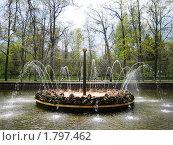 "Петергоф. Фонтан ""Солнце"". (2009 год). Редакционное фото, фотограф Светлана Степачёва / Фотобанк Лори"