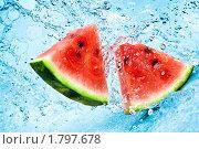 Купить «Арбуз в воде», фото № 1797678, снято 23 июня 2010 г. (c) Андрей Армягов / Фотобанк Лори