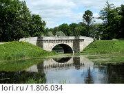 Гатчинский дворцовый парк (2010 год). Редакционное фото, фотограф Корчагина Полина / Фотобанк Лори