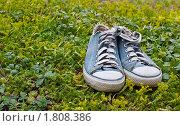 Голубые кеды на траве. Стоковое фото, фотограф Анна Кондрашова / Фотобанк Лори