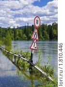 Купить «Река Бия, наводнение», фото № 1810446, снято 13 июня 2010 г. (c) Геннадий Соловьев / Фотобанк Лори