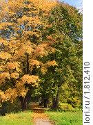 Купить «Осенняя пора в парке», фото № 1812410, снято 28 сентября 2008 г. (c) Николай Винокуров / Фотобанк Лори
