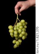 Горсть винограда. Стоковое фото, фотограф Мозымов Александр / Фотобанк Лори