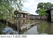 Купить «Затопленная усадьба», фото № 1825986, снято 26 июня 2010 г. (c) Free Wind / Фотобанк Лори