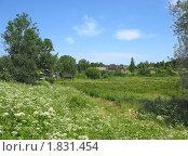 Купить «Летний пейзаж с деревней», фото № 1831454, снято 10 июля 2010 г. (c) Валентина Троль / Фотобанк Лори