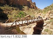 Купить «Аризона. Каньон Фиш Крик. (Fish Creek Canyon)», фото № 1832398, снято 19 марта 2009 г. (c) Julia Nelson / Фотобанк Лори